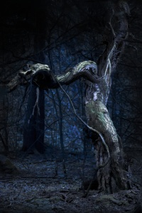 Spooky old tree in blue scary forest