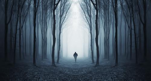 man in a dark forest